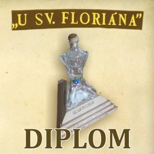 Diplom-tisk