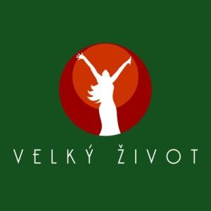 VZ-lg