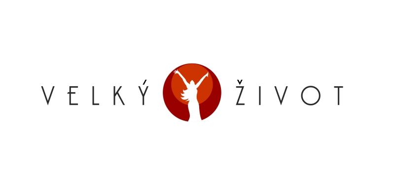 VŽ-logo1